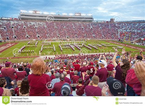 the marching chiefs of florida state the band that never lost a halftime show books fsu college football editorial image image of sport