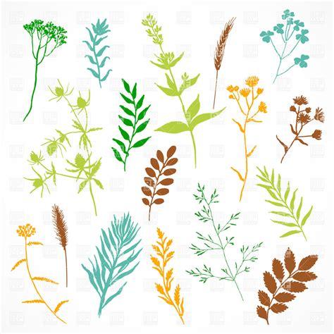 herbarium multi coloured simplistic silhouettes of