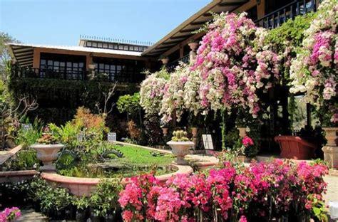 imagenes de jardines botanicos en mexico on bahia magazine destinos el jard 237 n bot 225 nico de
