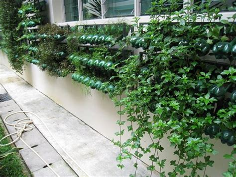 Singapore Vertical Garden 13 Plastic Bottle Vertical Garden Ideas Soda Bottle