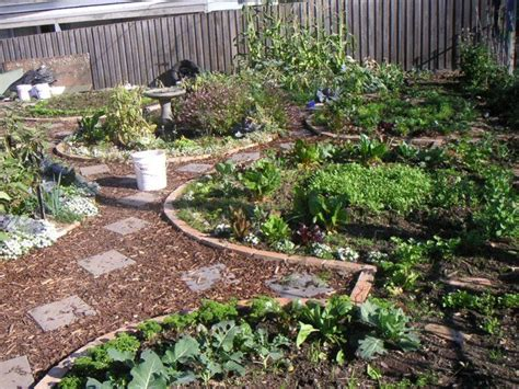 permaculture vegetable garden layout best 25 permaculture garden ideas on
