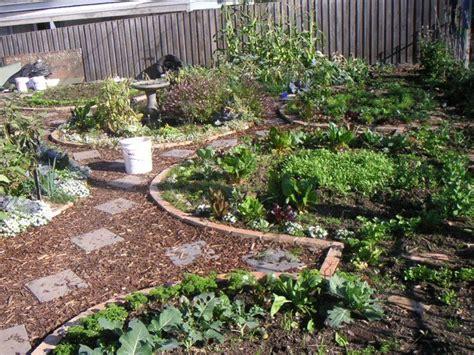 backyard permaculture design best 25 permaculture garden ideas on pinterest