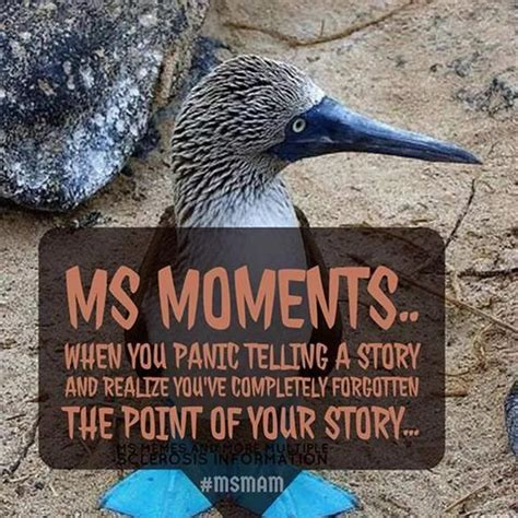 Ms Memes - 1000 images about ms memes and more multiple sclerosis on
