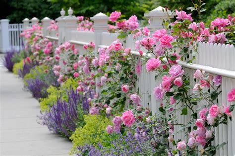 Home Design Software Used On Hgtv by 40 Beautiful Garden Fence Ideas