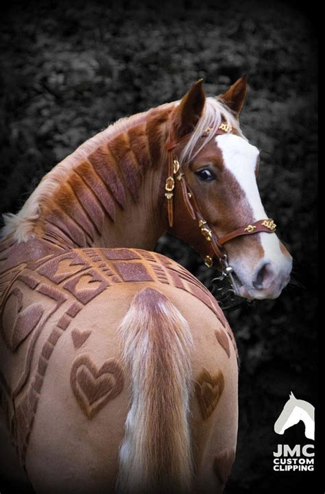hairstyles for horses epona is that you awesome zelda style horse haircut