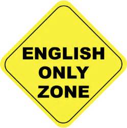 English only multinationals are a bad idea global by design