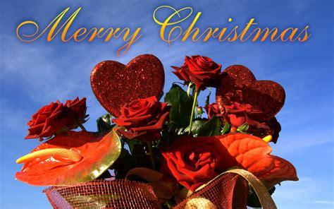 merry christmas rose ecard