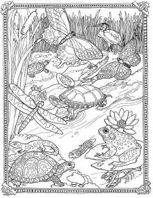 biology coloring book 10 best images about coloring pages detailed big
