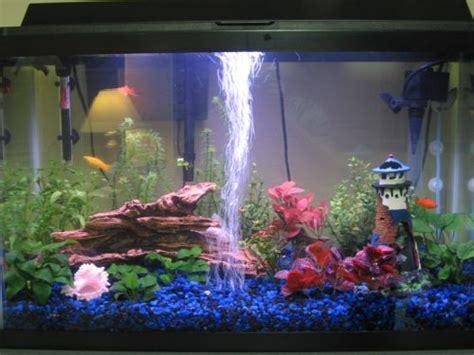 Lu Neon Untuk Aquarium hobi memelihara ikan dapat merehatkan minda pandang pandang