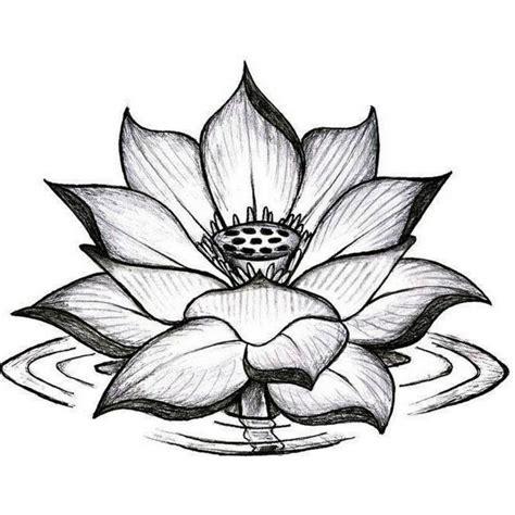 significato fior di loto 1001 idee per tatuaggi mandala immagini a cui ispirarsi