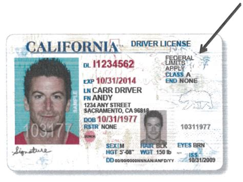 ca id card template 7 ways jerry brown and california democrats embraced