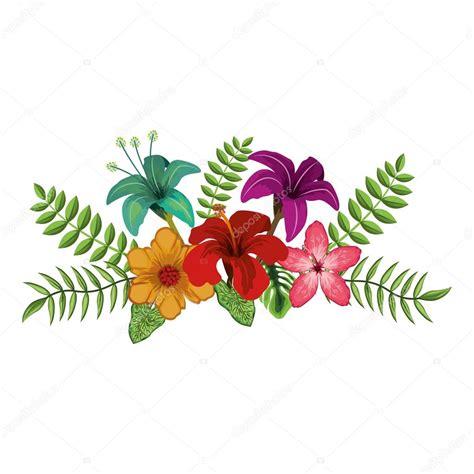 desenho flores desenho de flores tropicais vetor de stock