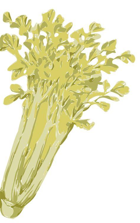 onlinelabels clip art celery