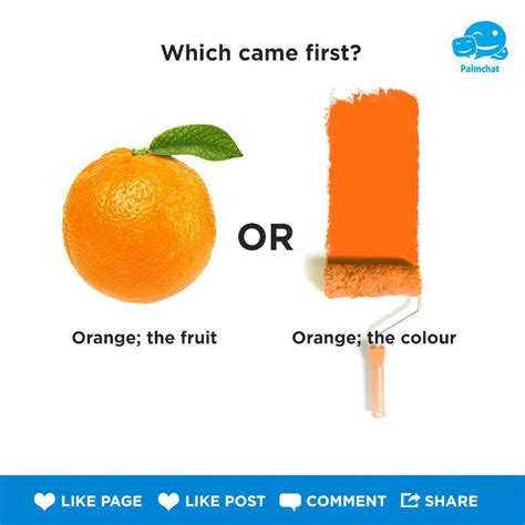 what came the color orange or the fruit which came orange the color or orange the fruit