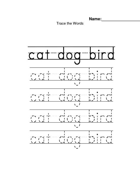 Tracing Name Worksheets For Preschoolers by 6 Best Images Of Preschool Tracing Worksheets Printable