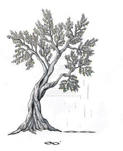 old tree tattoo designs olive tree design ideas