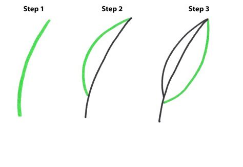 step step how to easily draw a pot leaf step by step get high