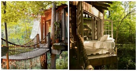 most popular airbnb atlanta treehouse is revealed as world s most popular