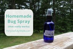 homemade bed bug killer bug bite bed bugs and treats on pinterest