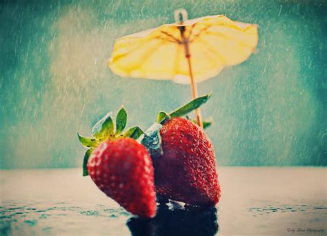 Rainy Summer by Summer By Mylifethroughthelens On Deviantart