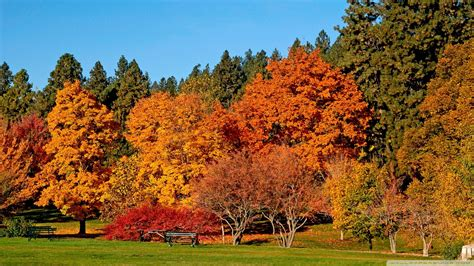 autumn landscapes 2 wallpapers colorful fall landscapes download autumn landscape wallpaper 1920x1080 wallpoper