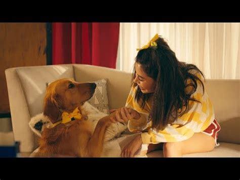 marshmello project dreams lyrics marshmello project dreams feat roddy ricch music video