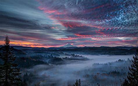 nature landscape mist valley forest sunrise clouds
