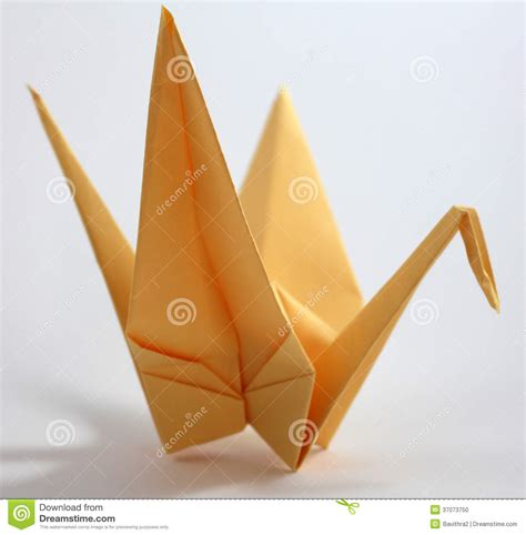 Japanese Origami Swan - origami swan stock photo image of creative follower