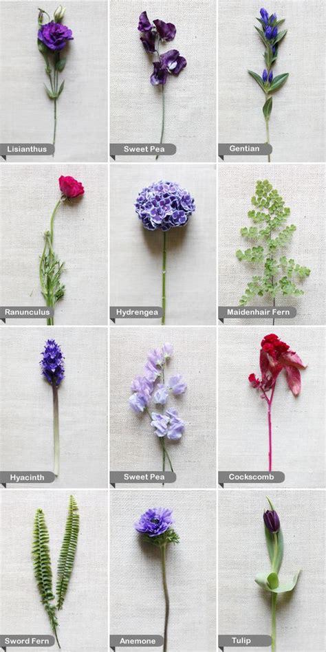 types of white flowers for wedding purple and wedding flowers maidenhair fern wedding
