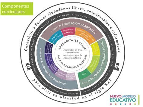 Modelos Curriculares Definicion Y Componentes integrada autonomia curricular