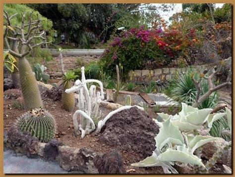 come fare un giardino di piante grasse realizzare aiuole da giardino quale giardino