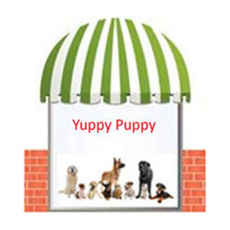 zuppy puppy expressions emporium inc unmistakably distinctive