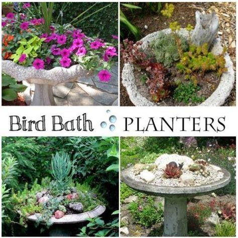 Bird Planters by Best 25 Bird Bath Planter Ideas On Small Moss