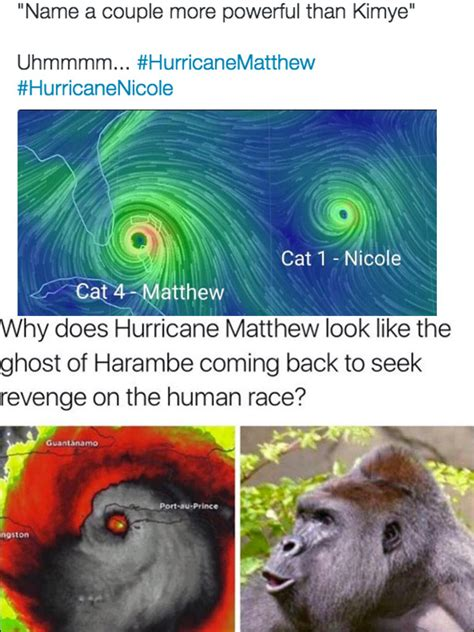 Hurricane Matthew Memes - hurricane matthew memes make light of storm see funny instagrams tweets hollywood life