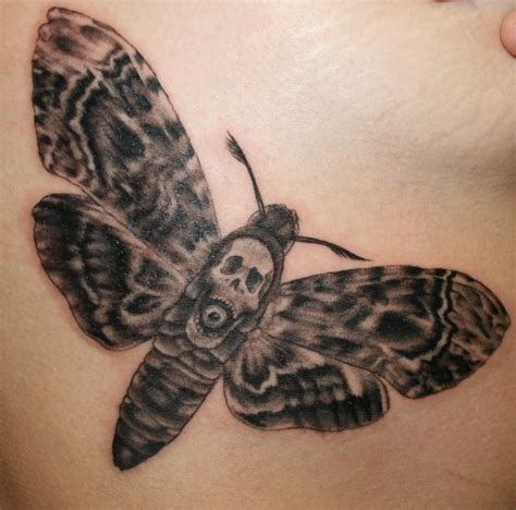 death head moth tattoo pictures at checkoutmyink com