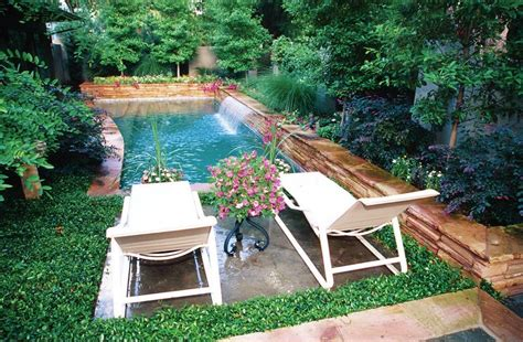 urban backyards small pool or plunge pool in an urban backyard in dallas