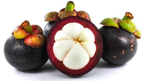 kumpulan artikel pendidikan  kesehatan manfaat buah