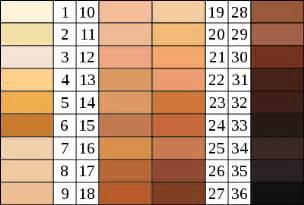 skin color rgb human skin color rgb