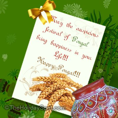 how to make pongal greeting card pongal festival greeting cards from deepestfeelings