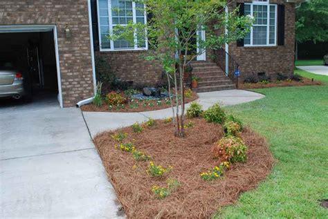 Landscaping Ideas Charleston Sc Charleston Plantworks Landscape Sc