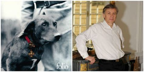 libro le collier rouge folio le collier rouge jean christophe rufin dog lifestyle
