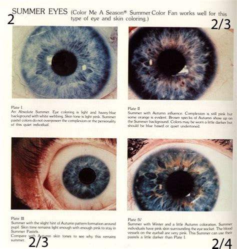 iris pattern types 62 best images about eyes and iridology on pinterest eye