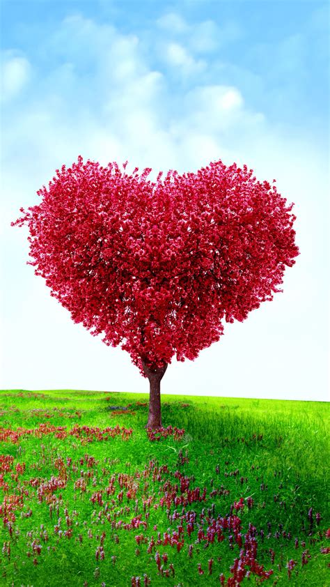 heart shaped tree valentines day love android wallpaper