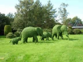 garten tiere green animal garden topiary