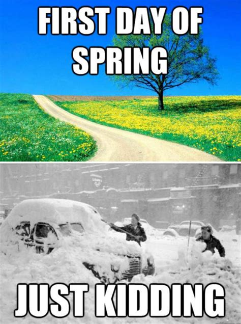Spring Meme - first day of spring 2016 best funny memes heavy com