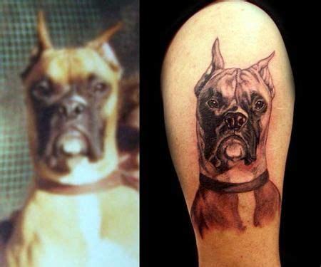 boxer dog tattoo designs 17 best images about boxer on pictures