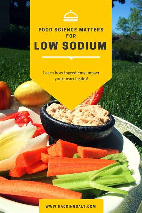 science food food science matters for low sodium hacking salt