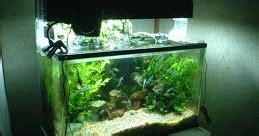 Pemotong Kaca Sederhana cara membuat akuarium sendiri mari belajar di
