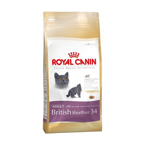 canin food buy royal canin shorthair 34 cat food 4kg