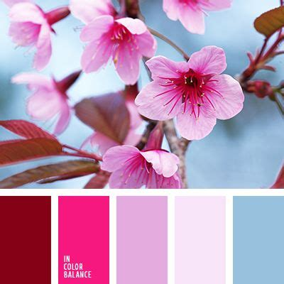 pink and brown color scheme 25 best ideas about red color combinations on pinterest